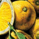 Lemons & Marijuana - James The Driver