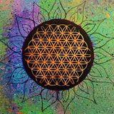 Strange Minds - Madzen