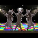 Funky Disco Music Mix 13/11/2015