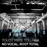 Tolo / Mate Tollner - No Vocal, Root Total
