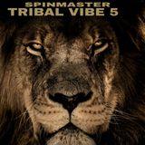 SPINMASTER - TRIBAL VIBE 5
