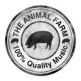 The Animal Farm & Ernie Ball Showcase Special at The Alternative Escape - Wizard Radio