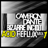CAMERON DANTE - THE OLD SKOOL ACID REFLUX MIX 1