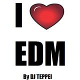 DJ TEPPEI JAPAN EDM MIX VOL.2