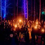 Lesha Kubik - Vibronica 2017 Forest Family Gathering