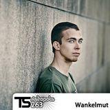 Tsugi Podcast 263 : Wankelmut