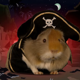 GuineaPirate's Essential Mix