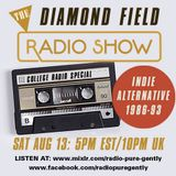 Radio Pure Gently presents The Diamond Field Radio Show - College Radio Special - 13-08-2016