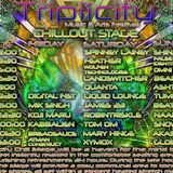 Triplicity 1-5-2015