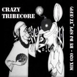 CRAZY TRIBECORE