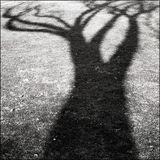 Science In Shadows (Metalheadz Blue Note 1997-98 - Part 3)