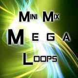 Mini Mix Mega Loops