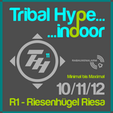 Sven Hanke @ Tribal Hype Indoor - Riesa (10.11.2012)
