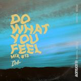 Acrylick x Dolo - Do What You Feel 013