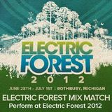 Electric Forest Mix Match 2012