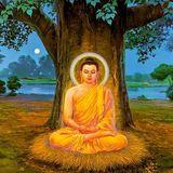 Buddham Sharanam-  mantra mix