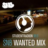 SNB Wanted Mix feat. Estated & AMC