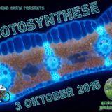 MICO X - Photosynthese 03.10.2015 (Steinshütte - Großen Buseck)