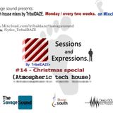#14-Christmas special-Atmospheric tech house by mixed TribalDAZE