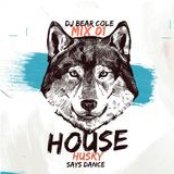 House Husky Mix 01 // Jackin' House, Jazzy, Disco, NuDisco, Latin House // Instagram @djbearcole