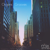 Organic Grooves - Deep House Mix