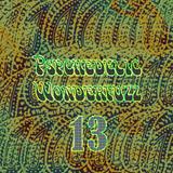 Psychedelic Wonderfuzz #13