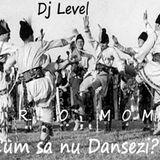 Dj Level - Cum sa nu Dansezi?(Promo mix)