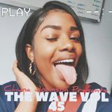 The Wave Vol 45