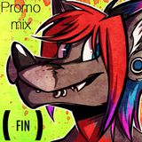 (FIN) Promotional Mix