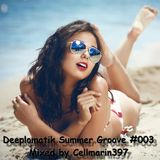 Deeplomatik Summer Groove #003