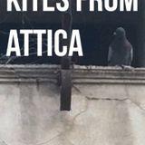KITES FROM ATTICA