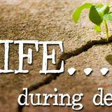 Life During Death - Sunrise Service - Audio