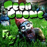 Tech-Gnome (TechHouse and House)