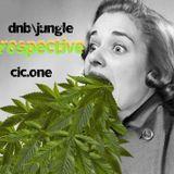 Jungle\dnb Prospective  dj Cic.1