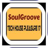 SoulGroove - Tech House Pleasure 17