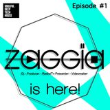 ZAGGIA is here! Episode #1 | Best of Soulful, Deep & Tech House Mix |2014 |