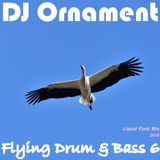 DJ Ornament - Flying Drum & Bass 6