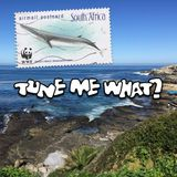 S04E15 - Postcards From Hermanus