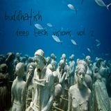 Buddhafish Presents Deep Tech Visions Vol. 2