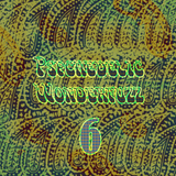 Psychedelic Wonderfuzz #6