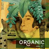 Organic vol. 02 by Roberto