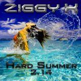 Hard Summer 2.14 (special podcast)