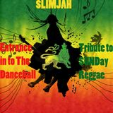 Entrance in to Dancehall - Tribute to SUNDay Reggae