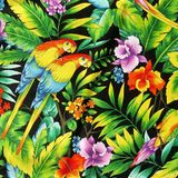 > brazilian carnival selection [roots brazil/samba/frevo/bahia]