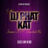 I AM DJ PHAT KAT SUMMER 2017 DANCEHALL MIX