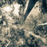 NIDHOGGR - Gum Forest minimix
