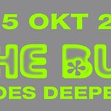 "Celestial ""Playing it roughly safe"" mix @ The BUS goes deeper, Frisco Inn Amsterdam - 05102013"