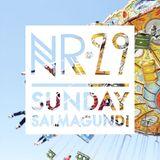 Sunday Salmagundi Nr. 29- Mixed by Abdel Hady