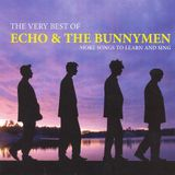 New Wave - Echo and the Bunnymen