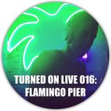 Turned On Live 016: Flamingo Pier